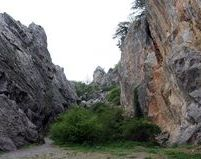 Крым, отдых в Никите - фото, карта, история, достопримечательности